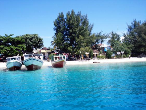Неперевершений Гілі, або острів мрій