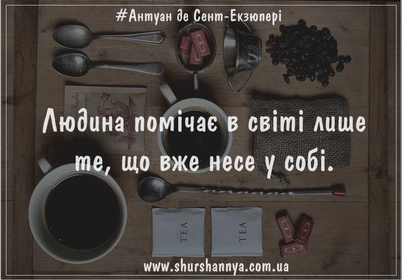 16864104_604770496383055_6531555686230789476_n