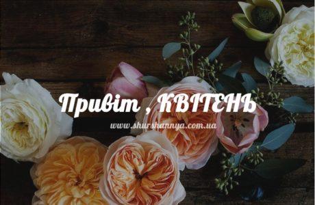 Супер квітень: дивись в корінь і ніколи не зупиняйся (роздруківка, календарі)